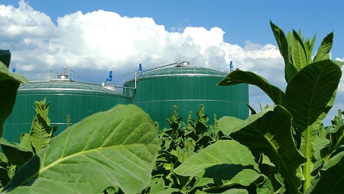 Impianti di produzione per il biometano