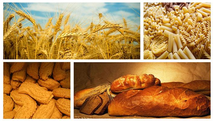 Filiera cereali, pasta, biscotti