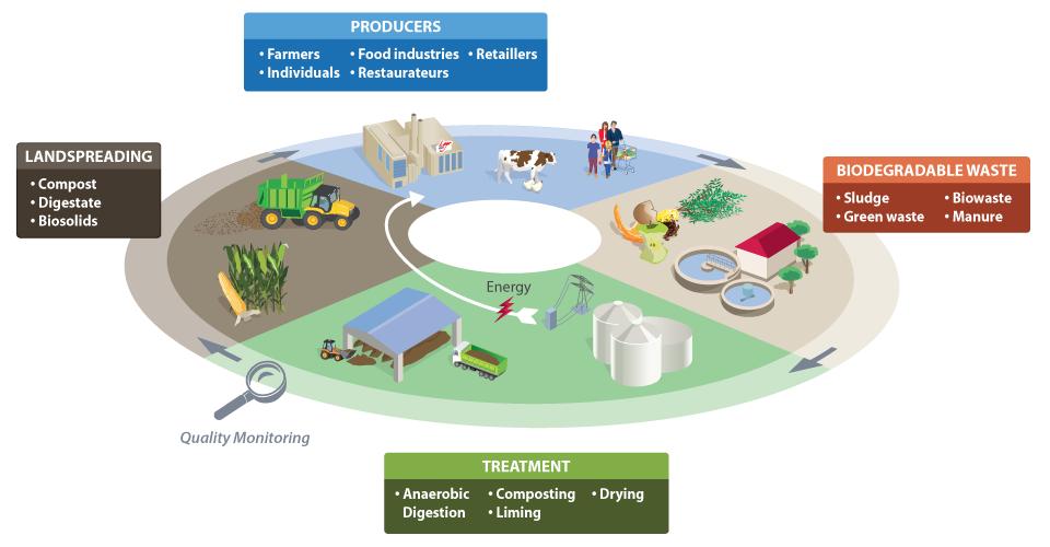 Economia circolare applicata al settore agricolo