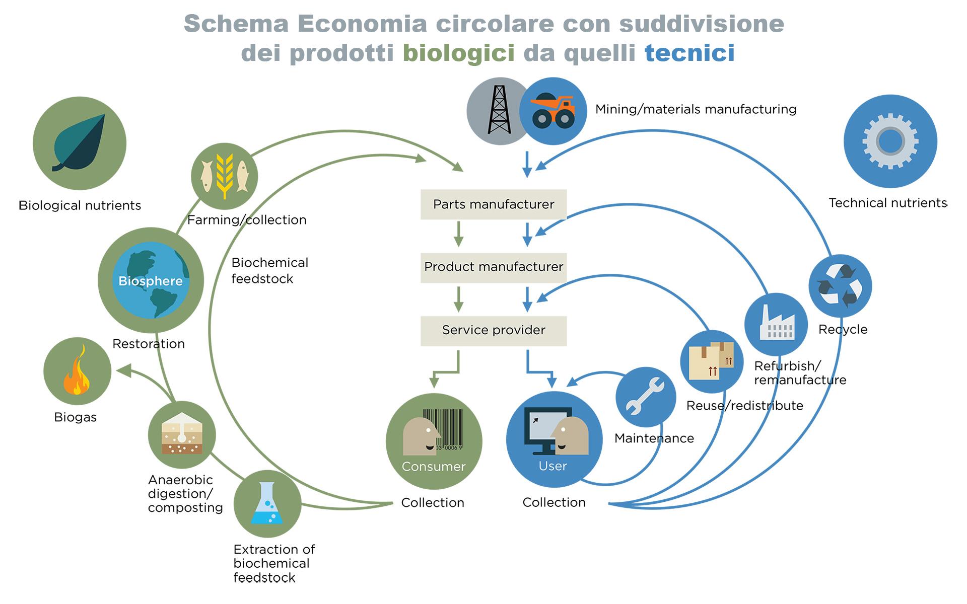 Rappresentazione schematica dell'economia circolare, con suddivisione tra prodotti biologici e tecnici