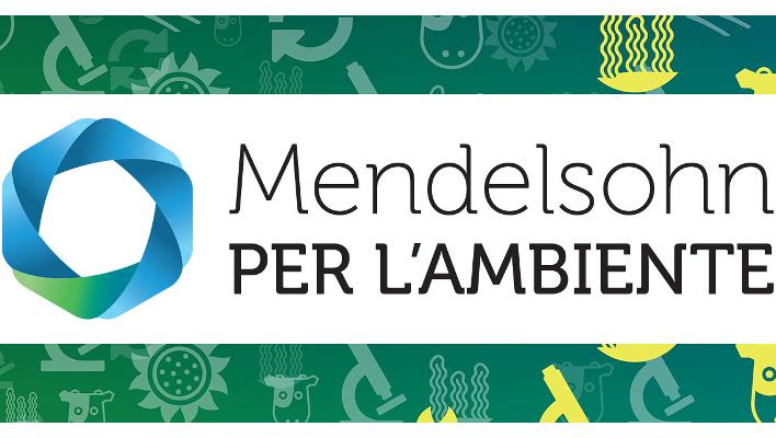 mendelsohn-ambiente-cover