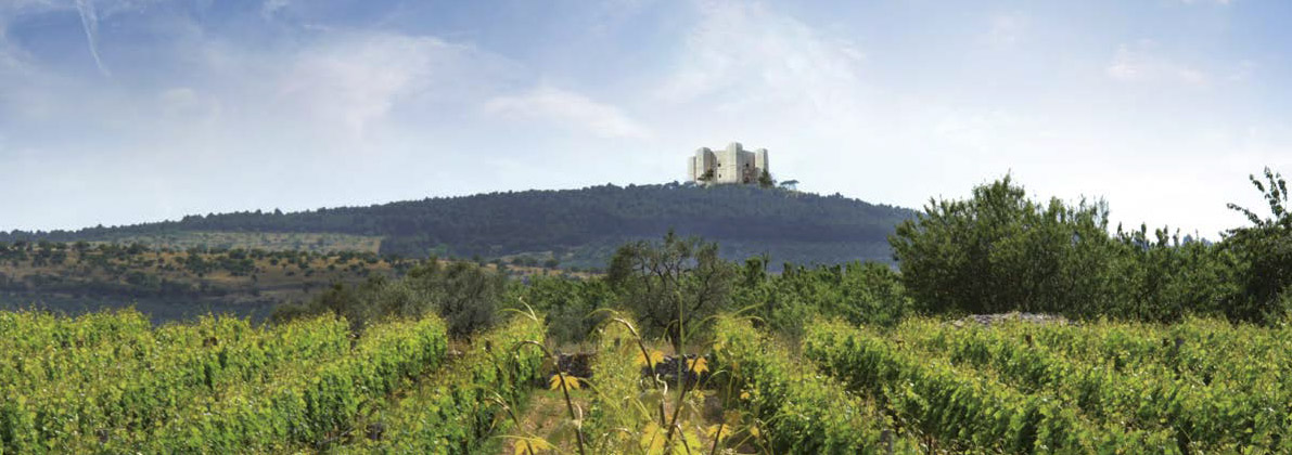 La Puglia dei vini protagonista al Vinitaly