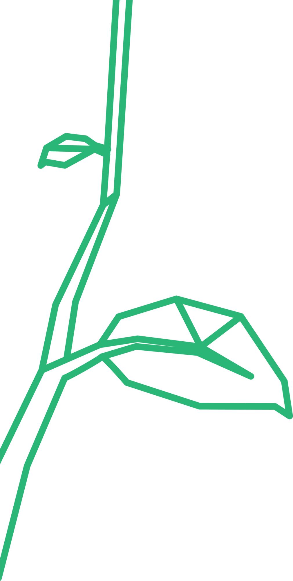 AMBIENTE-icona-verde